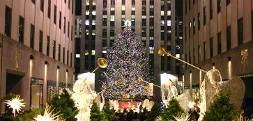 «Богатые» и знаменитые: самые необычные елки мира