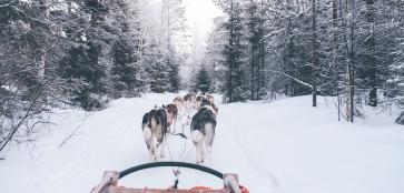 Волшебная сказка Финляндии